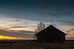 Barn House Silhouette On A Spring Night (k009034) Tags: 500px wooden copy space finland matkaniva oulainen tranquil scene agriculture barn house birch building clouds countryside dramatic sky evening farm farming fields moody nature night no people old rural springtime sun sunset tree teamcanon copyspace tranquilscene barnhouse dramaticsky moodysky nopeople