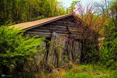 Dilapidated Beauty (James Korringa) Tags: old rustic diapidated building spring beauty explore