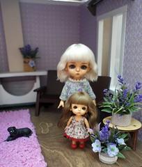 1 (SvetlanaKonyaeva) Tags: wig doll dolls toy toys tiny bjd baby child lati