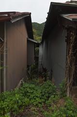 R0320111 (tohru_nishimura) Tags: gr ricoh ashio tochigi japan