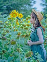 Sunflower Girls (skfk5912) Tags: girls pray heal world korea