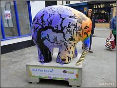 No.24 Hope (Alan B Thompson) Tags: 2019 june sculpture charity elephant art lumix fz82 picassa