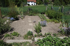 My garden (XLII) (dididumm) Tags: garden seventhyear spring prepared growing green vegetables strawberries forgetmenot vergissmeinnicht erdbeeren gemüse grün wachsen vorbereitet frühling siebtesjahr garten