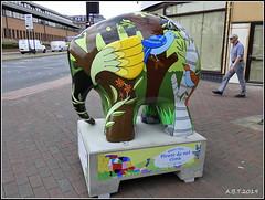 No.12 Tree Trunk (Alan B Thompson) Tags: 2019 june sculpture charity elephant art lumix fz82 picassa