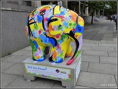 No.33 Life in its Diversity (Alan B Thompson) Tags: 2019 june sculpture charity elephant art lumix fz82 picassa