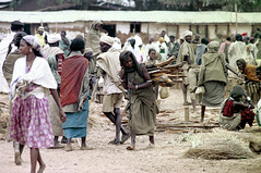 78-588 (ndpa / s. lundeen, archivist) Tags: nick dewolf color photograph photographbynickdewolf 1976 1970s film 35mm 78 reel78 africa northernafrica northeastafrica african ethiopia southernethiopia ethiopian people localpeople market streetmarket men women buildings houses homes building sheetmetalroof headcovering scarf scarves turban sticks branches wood bundle carry carrying onherback clothes clothing crowd barefoot barefeet woman localwoman youngwoman