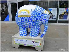 No.21 Forget Me Not (Alan B Thompson) Tags: 2019 june sculpture charity elephant art lumix fz82 picassa
