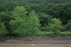 R0320123 (tohru_nishimura) Tags: gr ricoh ashio train station tochigi japan