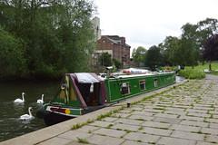 Miss Molly (cdb41) Tags: river nene wellingborough narrow boat