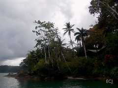 Cerca de Bahía Drake, desde el agua/ Near Drake Bay, from the water (vantcj1) Tags: agua bote barco navegación naturaleza paisaje horizonte hotel cielo nubes bosque árboles vegetación costa rocas palmeras cabo