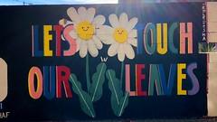 Novembre BSA017. (Joanbrebo) Tags: poblenou barcelona pintadas murals murales grafitis streetart iphonex iphone365
