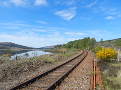 Railway Tracks, Loch Achanalt, Highlands of Scotland, May 2019 (allanmaciver) Tags: railway tracks achanalt highlands scotland blue sky weather kyle line scenery gorse bloom colours smell may allanmaciver