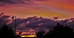 street sunset (Bushcraft.Eure) Tags: sunset sundown tree nature sony light sky clouds landscape coucher de soleil ciel pelouse arbre forêt bois crépuscule sonya6000 sonye epz18105mmf4goss 18105mm red orange sweet velvet field alpha pink blue horizon avion paysage hypnotise cloud nuage nuageux skylover foret forest cantal auvergne sonynex3n nex3 nex3n e pz 1650mm f3556 oss f4 sun sel18105g ilce6000