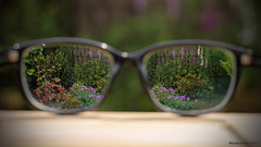 Looking through glasses (Marian Kloon (on and off)) Tags: through odc