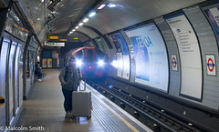 The Journey 2 (M C Smith) Tags: tube train underground euston london platform travel journey pentax k3 light signs rails map posters advertising digital timetable sitting standing case silver yellow white red blue black shadows tunnel letters symbols numbers woman
