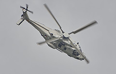 NH90 (BelgiumOnePoint) Tags: volkel netherlands hollande aviation jets military airshow volkel2019 power avion helicopter nh90 c1