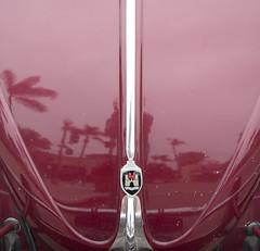 California (1tagtraeumer) Tags: vw beetle volkswagen palms reflection wolfsburg germancar swoop