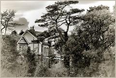 Behind trees. (tony allan tony allan) Tags: houses trees park mono sepia m42 manualfocus legacyglass nikond80 sigma70210mmlens