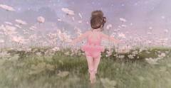 Ballerina (Elise ♡ Penelope) Tags: ballerina sl secondlife pink td tutu lemomo toddledoo