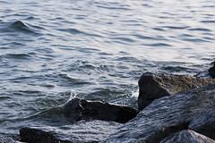 Liquid & Solid (Brad_McKay) Tags: ifttt 500px lake water canada ontario kingston nature rocks rock solid liquid summer splash