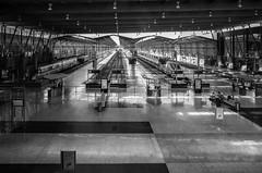 Estación María Zambrano (jlben Juan Leon) Tags: ricoh ricohgr ricohgrii station trenes trainstation ave estación málaga estaciontren