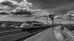 En gare de Mâcon Loché (Cyrille Gr) Tags: train mâcon noirblanc tgv