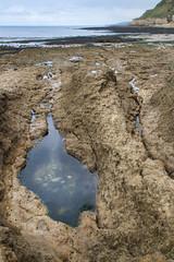 _MG_4166.jpg (arnaudthx) Tags: saintehonorinedespertes calvados normandie normandy mer sea rochers rocks sky ciel algues trou eau water waterhole seascape landscape