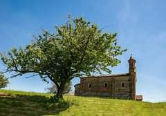 "Il ciliegio e la Pieve (fabrizio_buoso) Tags: ""nikonflickraward"" nikonclubit visitpiedmontitaly monferrato"