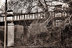Sepia studies 3. (tony allan tony allan) Tags: bridge railbridge hastings m42 manualfocus sepia mono legacyglass nikond80 sigma70210mmlens