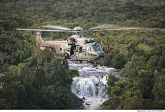 H-36 Caracal (Força Aérea Brasileira - Página Oficial) Tags: 1gav8 a2a airtoair cpbv cpbvcampodeprovasbrigadeirovelloso cachimbo cachoeira campodeprovasbrigadeirovelloso esquadraofalcao eurocopterec725 fab floresta forcaaereabrasileira forçaaéreabrasileira fotojohnsonbarros h36caracal helicoptero voo brazilianairforce novoprogresso pa brazil