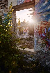 Let the light shine through... (Calvin J.) Tags: canon 5dmarkiii primelens ontario tse24mmf35lii abandoned sunset derelict graffiti anarchy window
