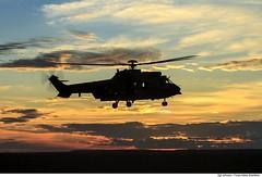 H-36 Caracal (Força Aérea Brasileira - Página Oficial) Tags: 1gav8 a2a arar cpbv cpbvcampodeprovasbrigadeirovelloso cachimbo campodeprovasbrigadeirovelloso crepusculo esquadraofalcao eurocopterec725 fab floresta forcaaereabrasileira forçaaéreabrasileira fotojohnsonbarros h36caracal helicoptero pordosol voo brazilianairforce novoprogresso pa brazil