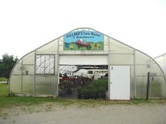 DSC07362 (Bristolsun) Tags: bullards3rdsaturdays bullardsgreenhouseandfarmmarket elkhart indiana freshstrawberries