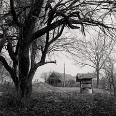 Old well, Pripyat Polesie, spring, Belarus. 2019 (artsiom.khalandach) Tags: belarus polesie pripyat river spring fomapan 400 bronica sqa