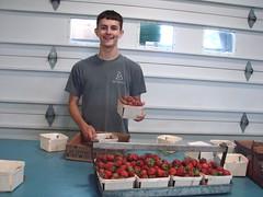 DSC07397 (Bristolsun) Tags: bullards3rdsaturdays bullardsgreenhouseandfarmmarket elkhart indiana freshstrawberries