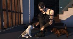 Fun with pupies... (Sano Masahiko) Tags: boy man companion animated rezzroom rezz room second life sl sexy moment stairs catwa belleza