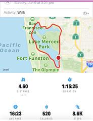 #LakeMerced #Walk #SanFrancisco (Σταύρος) Tags: sanfrancisco walk lakemerced exercise statistics cardio mapmywalk june9 sunday fortfunston parkmerced theolympic walking sanfranciscozoo
