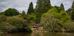 sheffield park and gardens-190527-22.jpg (Phil Mercer-Kelly) Tags: england sheffieldpark uk gardens mercerkelly eastsussex nationaltrust philmercer europe capabilitybrown