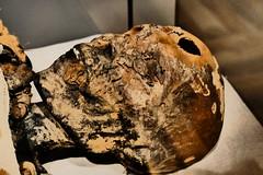 Mummy's Head (John of Witney) Tags: mummy egyptian ancientegypt egyptianmuseum museoegizio turin torino italy italia lacittàmetropolitanaditorinovistadavoi