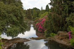 sheffield park and gardens-190527-60.jpg (Phil Mercer-Kelly) Tags: england sheffieldpark uk gardens mercerkelly eastsussex nationaltrust philmercer europe capabilitybrown