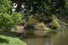 sheffield park and gardens-190527-20.jpg (Phil Mercer-Kelly) Tags: england sheffieldpark uk gardens mercerkelly eastsussex nationaltrust philmercer europe capabilitybrown