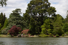 sheffield park and gardens-190527-70.jpg (Phil Mercer-Kelly) Tags: england sheffieldpark uk gardens mercerkelly eastsussex nationaltrust philmercer europe capabilitybrown