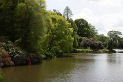 sheffield park and gardens-190527-27.jpg (Phil Mercer-Kelly) Tags: england sheffieldpark uk gardens mercerkelly eastsussex nationaltrust philmercer europe capabilitybrown