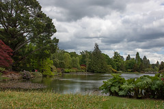 sheffield park and gardens-190527-77.jpg (Phil Mercer-Kelly) Tags: england sheffieldpark uk gardens mercerkelly eastsussex nationaltrust philmercer europe capabilitybrown
