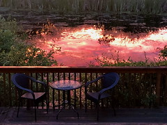 Magenta sunset reflections and a table for two (peggyhr) Tags: canada alberta bluebirdestates img1743a table slough reflections sunset peggyhr willows water textures super~sixbronze☆stage1☆