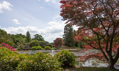 sheffield park and gardens-190527-52.jpg (Phil Mercer-Kelly) Tags: england sheffieldpark uk gardens mercerkelly eastsussex nationaltrust philmercer europe capabilitybrown