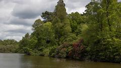 sheffield park and gardens-190527-23.jpg (Phil Mercer-Kelly) Tags: england sheffieldpark uk gardens mercerkelly eastsussex nationaltrust philmercer europe capabilitybrown