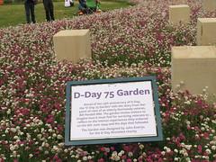 D Day 75 Garden. (aitch tee) Tags: dday75garden arromanche veterans 75thanniversary normandy flowershow ianallanaviationtour rememberthem 6thjune2019