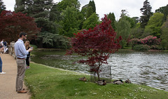 sheffield park and gardens-190527-56.jpg (Phil Mercer-Kelly) Tags: england sheffieldpark uk gardens mercerkelly eastsussex nationaltrust philmercer europe capabilitybrown