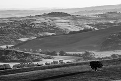 Vald'orcia-9198 (rwscholte) Tags: landscape blackandwhite bnw pentax 300mm sanquiricodorcia valdorcia k1 structure tuscany
